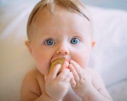 Cómo prevenir accidentes infantiles, bebé llevándose juguete a la boca